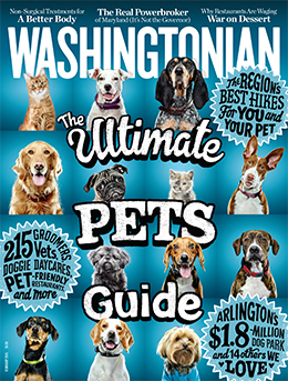 All About Dogs in Washingtonian magazine